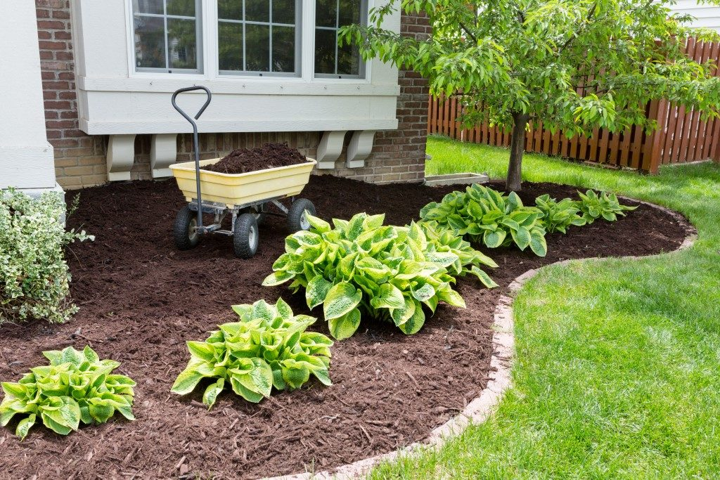 garden in spring doing the mulching of the flowerbeds